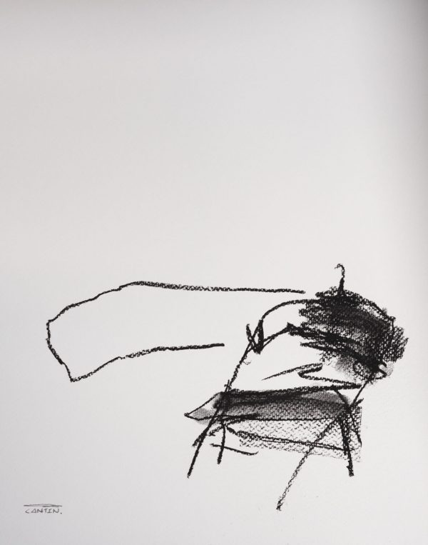 Pat Cantin Artist / Charcoal Study 12