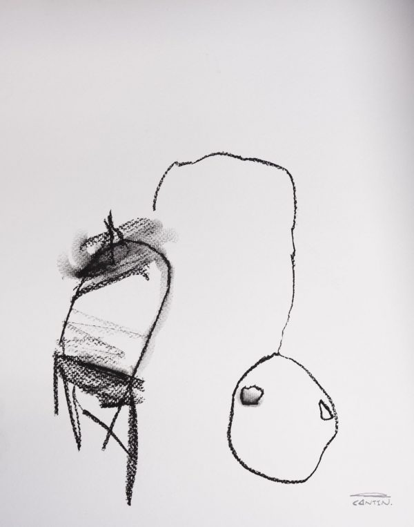 Pat Cantin Artist / Étude au fusain 03