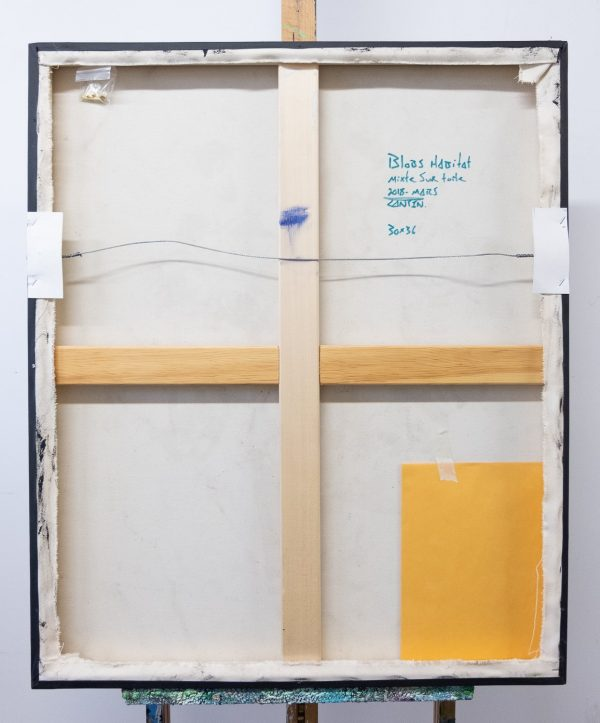 Pat Cantin Artist / Blobs Habitat